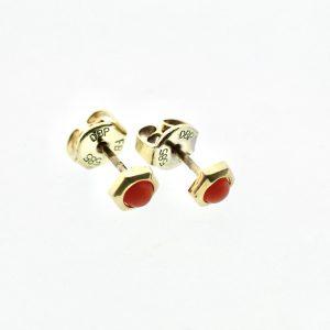 gouden bloedkoraal oorstekers